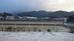 12.17雪